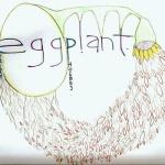 Eastern Phoebes Eggplant